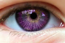 purple eye color what should your fantasy eye color really be eye rarest eye