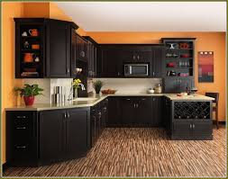 Contemporary Kitchen Cabinets For Sale by Kitchen Incredible Diy Cabinets Ikea Vs Home Depot House And