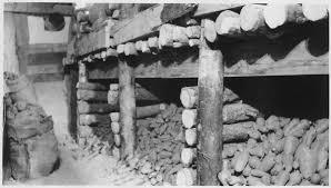 root cellar wikipedia