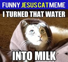Praise Jesus Meme - beautiful 36 best praise the lord images on pinterest images