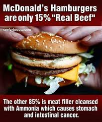 Hamburger Memes - facebook meme claims mcdonald s burgers are made with 85 percent