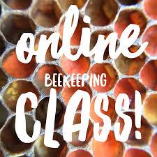 beekeeping like a a natural beekeeping blog