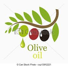 olive tree branch with fruits symbolic vector illustration vector