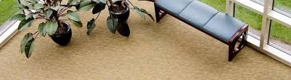 legacy carpet upholstery cleaning dublins best carpet cleaning