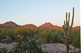 15 mexican tile tucson az backyard landscape ideas az