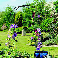 small plant supports plant supports webbs direct garden centre