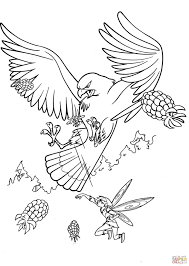 big hawk coloring page free printable coloring pages