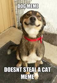 Top 100 Internet Meme - devin miles devin4280 on pinterest