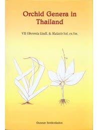 orchid genera in thailand volume 7 oberonia lindl and malaxis