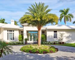 In Front Yard - palm trees in front yards houzz
