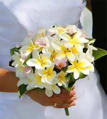 wedding flowers hawaii best 25 hawaiian wedding flowers ideas on