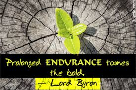 quote about learning environment 40 amazing quotes about endurance that are beautifully inspiring