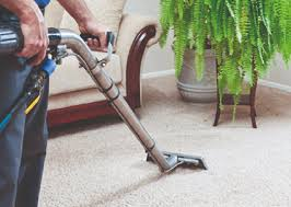 vacuum the carpet avanti carpet cleaning u2013 painting and carpet cleaning