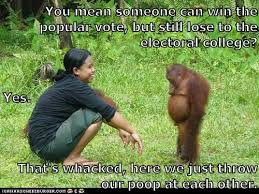 Chimp Meme - animal capshunz throwing poop funny animal pictures with