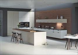 Kitchen Cabinet Designs And Colors by Kitchen Cabinet With Doors Modern Kitchen Vision Cabinets Light