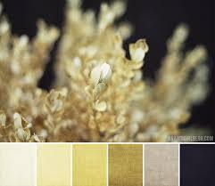 Bathroom Color Palette Ideas Colors Best 25 Office Color Schemes Ideas On Pinterest Bedroom Paint