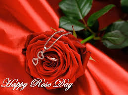 whatsapp wallpaper red 50 happy rose day pictures wallpapers for lover special cute couple