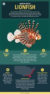 guide to invasive fish species fix com