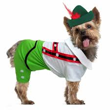 dog costume wizard of oz fairy tale storybook dog costumes baxterboo