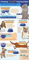 Choosing The Best Ideas For 406 Best Designer Dog Houses Images On Pinterest Black Boxes
