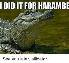 Crocodile Meme - 25 best memes about see you later alligator see you later
