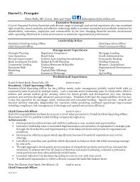 executive summary of resume bank chief operating officer sample resume sample of a cover bank chief operating officer sample resume 20 page literature ceo resume samples chief executive officer oil amp gas sle resumes bank compliance sample