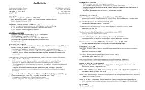 Stanford Resume Template Professional Resume Samples Cover Letter Examples And Cv Templates