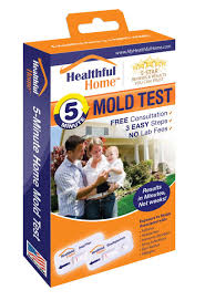 amazon com quick mold and allergen indoor testing kit health