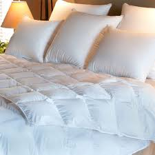 Duck And Down Duvets How To Choose The Right Comforter Allergybuyersclub