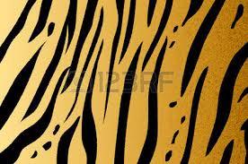 vector illustration of bengal tiger stripe pattern stock photo