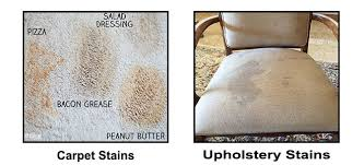 professional upholstery cleaner los angeles california ca