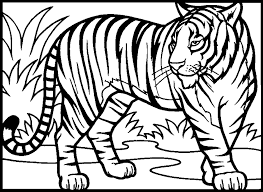 Realistic Tiger Coloring Pages 9146 Bestofcoloring Com Coloring Pages Tiger