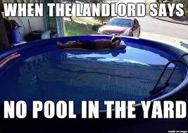 Swimming Pool Meme - garage pool meme on imgur