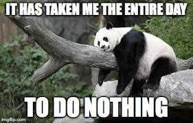 Lazy Day Meme - lazy panda imgflip