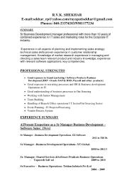 sample resume international business sample resume for business development executive business process
