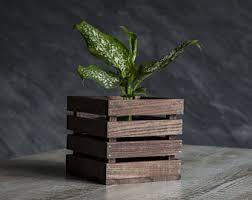 Indoor Plant Vases Indoor Plant Stand Etsy