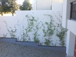 Trellis System Vertical Gardens With Avaganda Atlantis Gro Wall Pocket Systems