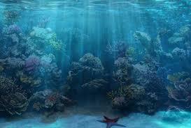 halloween reef transparent background 50 best aquarium backgrounds to download u0026 print free u0026 premium