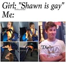 Gay Baby Meme - pin by azzy ゚ on same pinterest shawn mendes gay and people