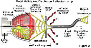 metal halide l circuit diagram zeiss microscopy online cus metal halide ls