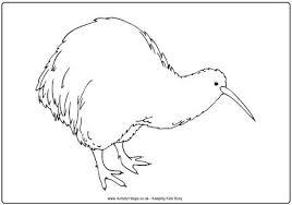 kiwi colouring