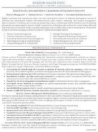 executive resume pdf business development executive resume sle topshoppingnetwork