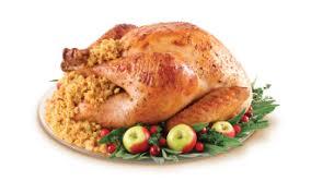 fresh whole turkey koch s turkey farm fresh organic whole turkey locavore at your