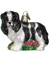 great deal on sitting tri color cavalier king charles spaniel