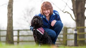 Dogs Helping Blind People 8 Things You Might Not Know About Hearing Dogs For Deaf People