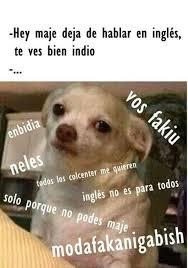 Omaiga Meme - image about modafakio puppy fakiu in by katherine rodriguez
