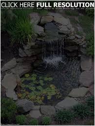 backyards impressive backyard koi pond ideas backyard images
