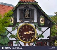 Cuckoo Clock Germany A Lovingly Restored Cuckoo Clock Measuring Some 14 5 Metres The