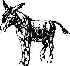 hephaestus donkey images reverse search