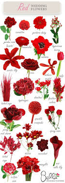 wedding flowers types best 25 wedding flower guide ideas on diy wedding